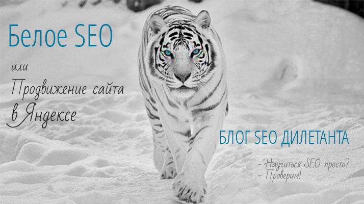 Белое SEO или продвижение сайта в Яндекс